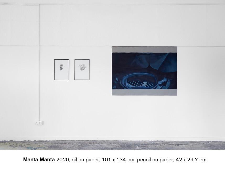 Manta Manta 6